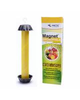 Magnet Drosophila Banana liimpüünis äädikakärbestele